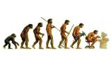 evolutionslüge menschheitsgeschichte hinterfragt